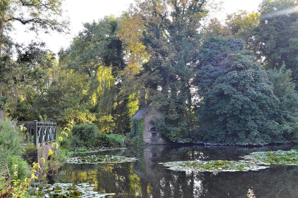 Bushy Park Pond