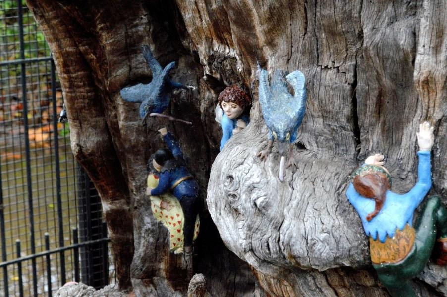 Elfin Oak 3