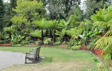 Queen Mary's Gardens - Exotic Plants