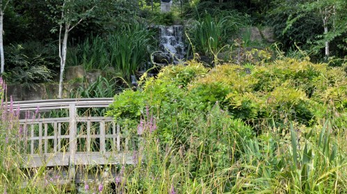 Queen Mary's Gardens - Water Fall