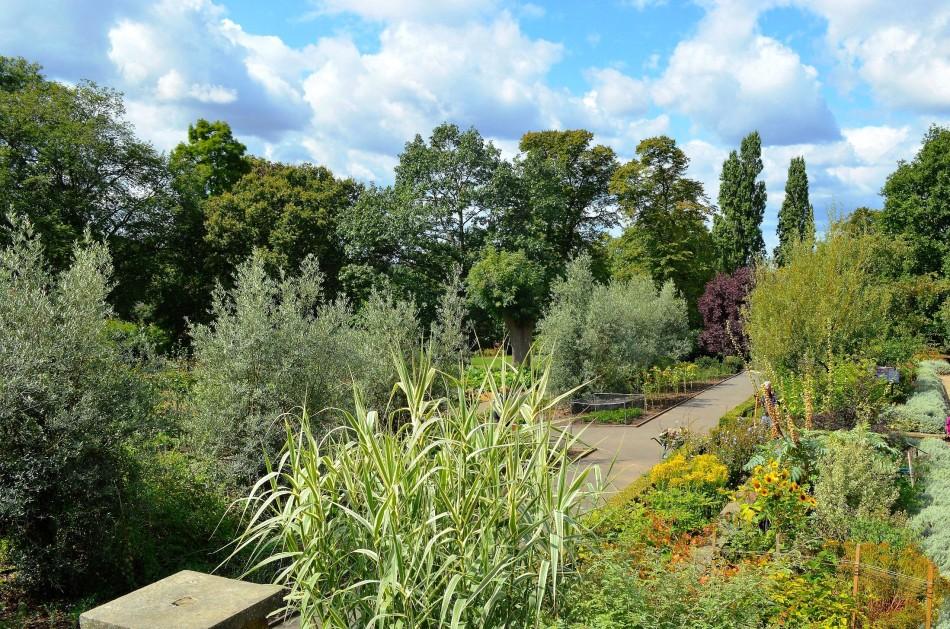 Horniman Gardens 19