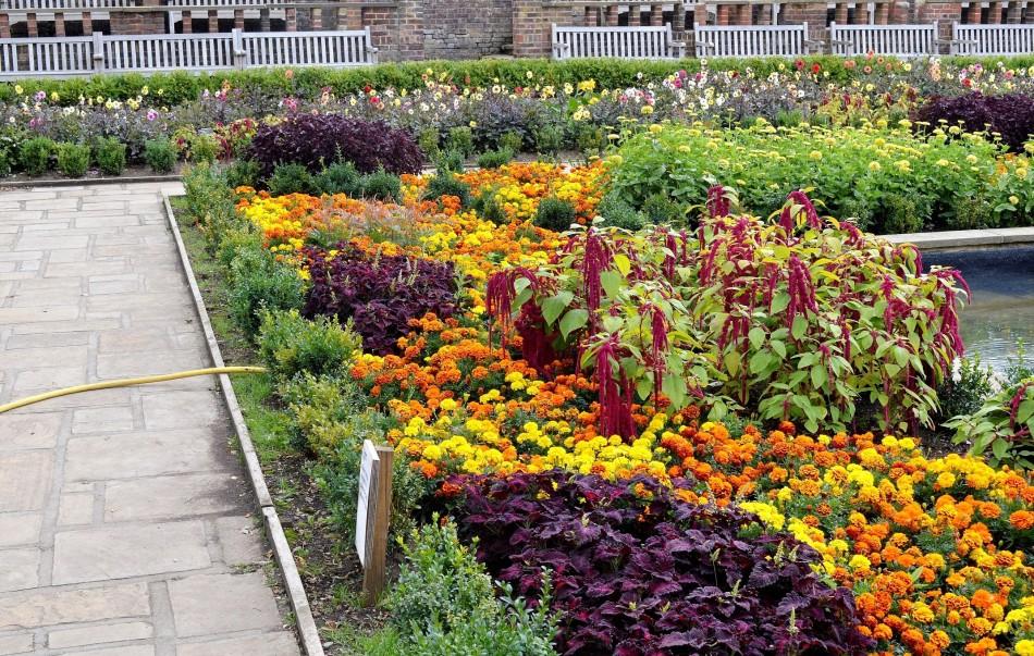 Horniman Gardens 24