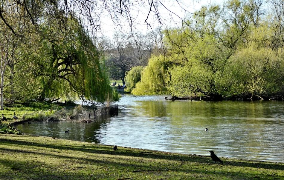St James Park - East End View