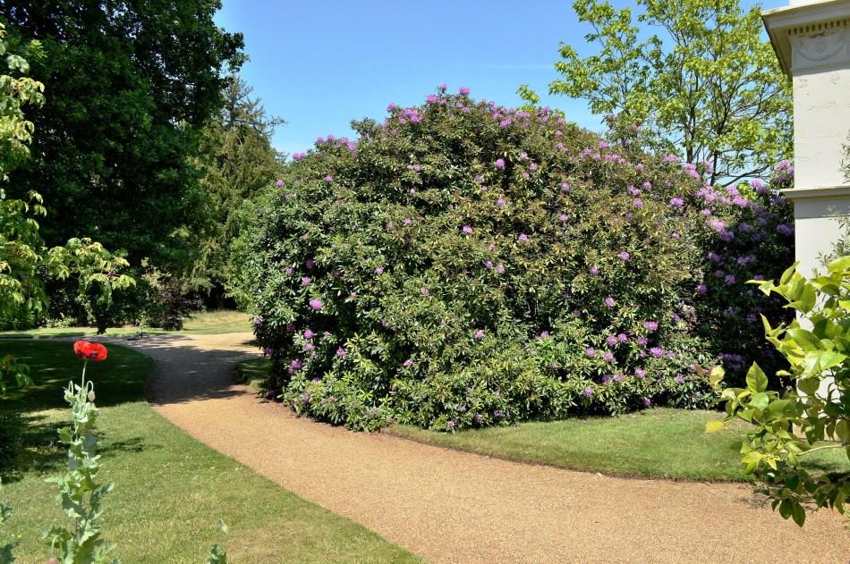 Osterley Park Gardens - 2