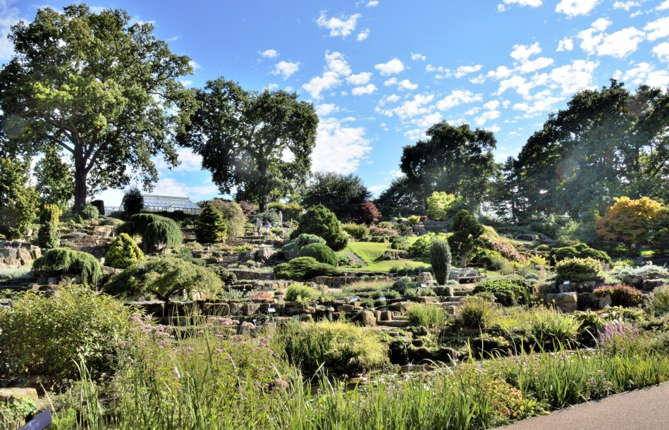 Rockery at Wisley