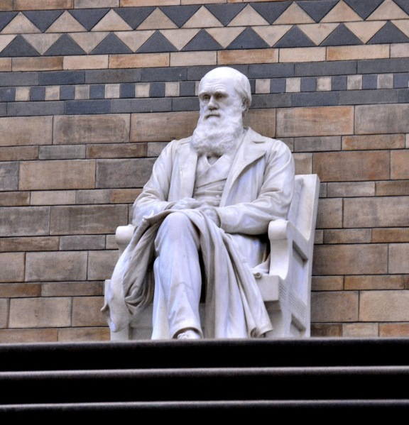 Charles Darwin Statue at the Natural History Museum