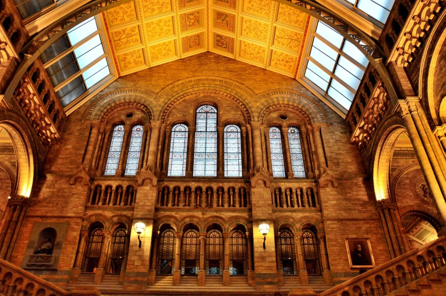 Interior Architecture at the Natural History Museum
