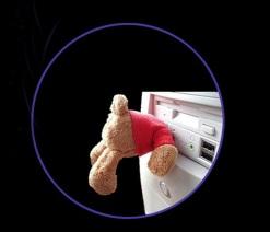 Teddy in PC