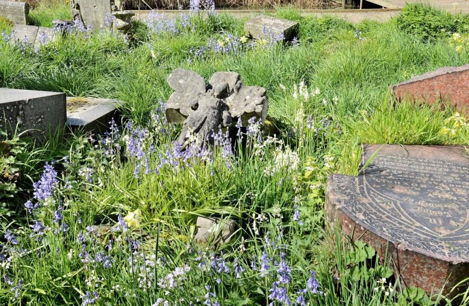 Tower Hamlets Cemetery Park DSC_3243