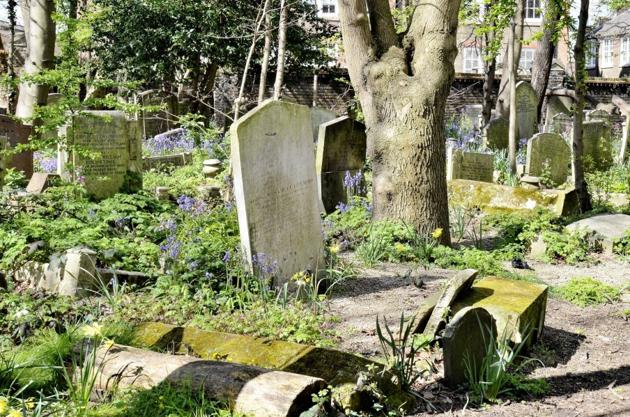 Tower Hamlets Cemetery Park DSC_3252