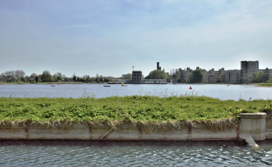 New River And Woodberry Wetlands Picture This Uk