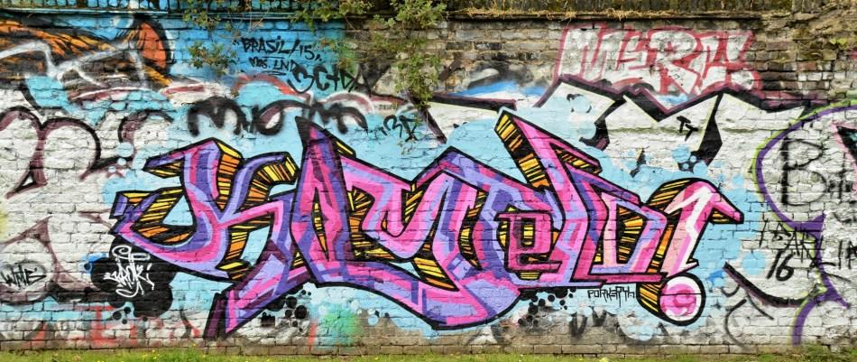 Pedley Street - Allen Gardens DSC_4951