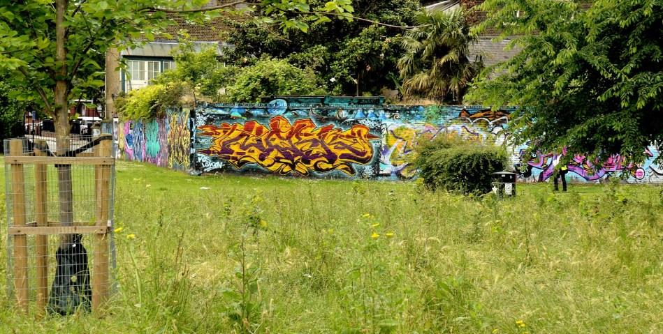 Pedley Street - Allen Gardens DSC_4958