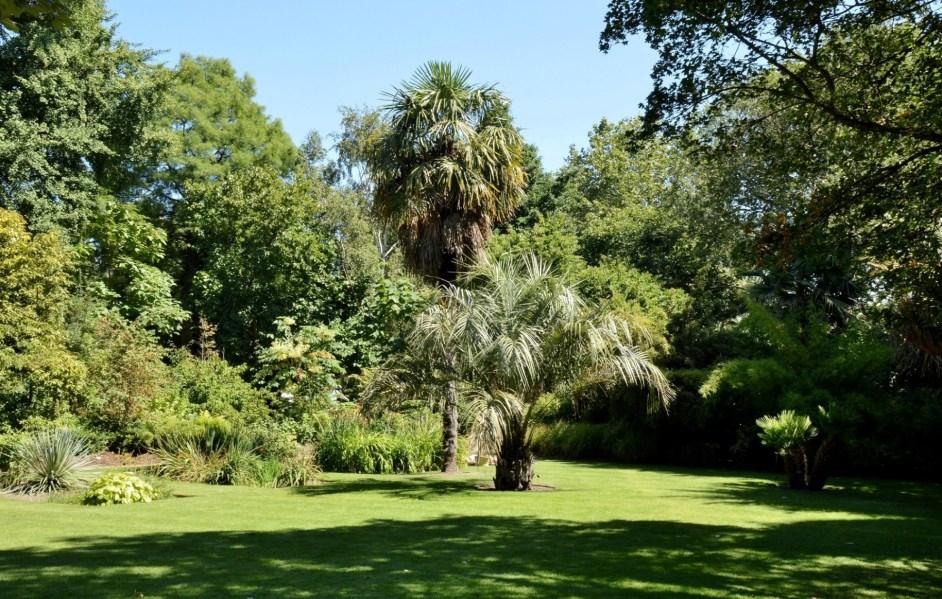 Chelsea Physic Garden DSC_6637