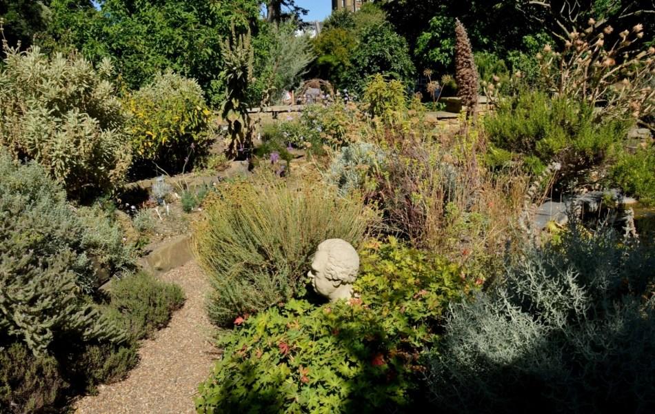 Chelsea Physic Garden DSC_6730